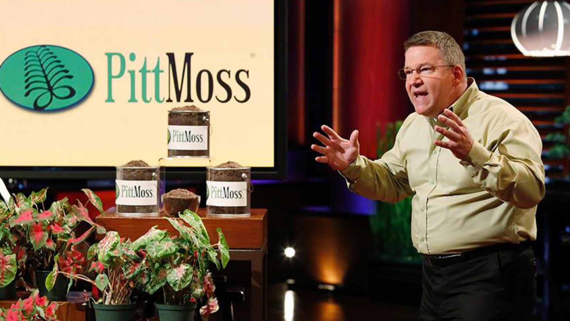 Why Mark Cuban (and Two Other Sharks) Bet $600,000 on PittMoss
